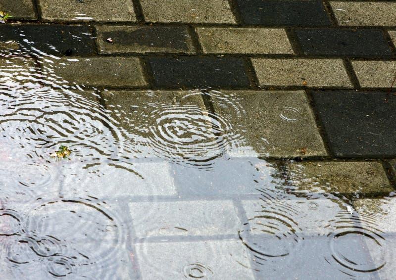 La pioggia squilla la geometria immagine stock libera da diritti