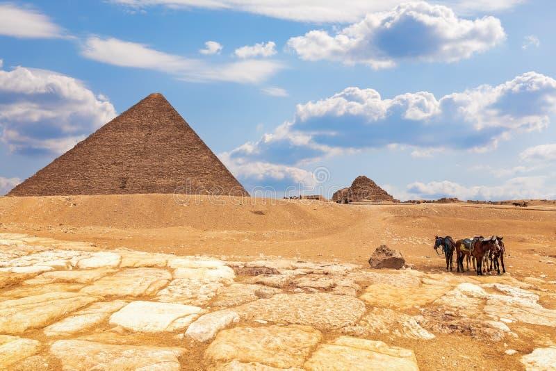 La pirámide del complejo y de los caballos cerca de ella, Giza, Egipto de Menkaure imagenes de archivo