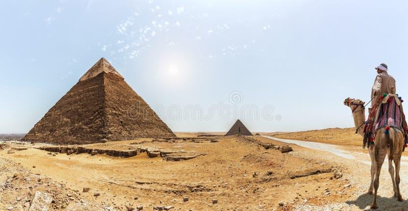 La piramide di Khafre e un beduino su un cammello, Giza, Egitto immagini stock