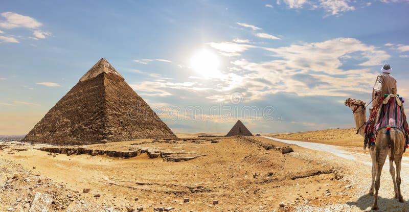La piramide di Khafre e un beduino su un cammello, Giza, Egitto fotografia stock