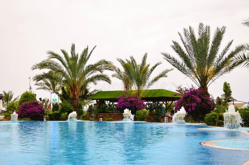 La piscina rodeó por el follaje tropical las flores hermosas fotografía de archivo