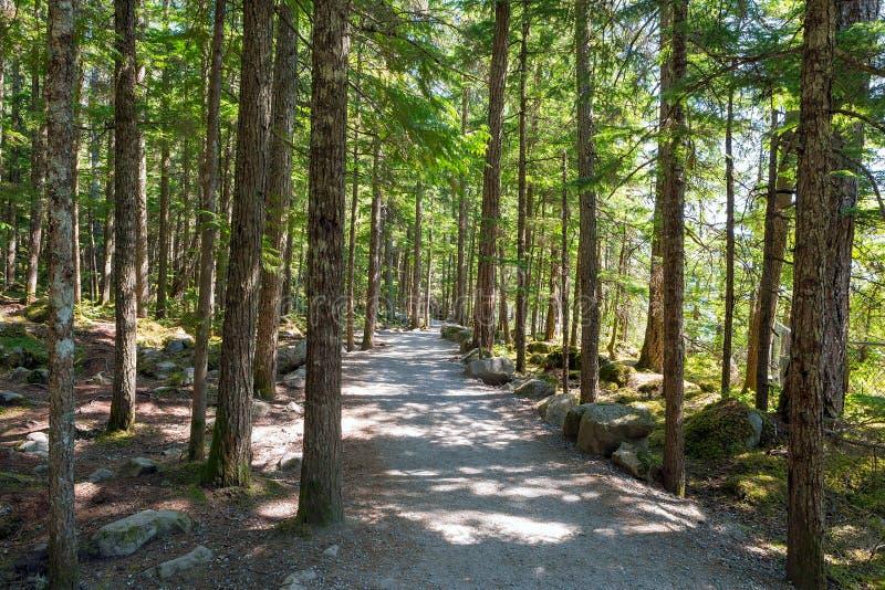 La pista de senderismo en Brandywine cae parque provincial fotos de archivo