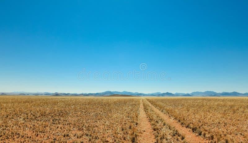La pista recta del camino de tierra del desierto pasa un prado hacia las montañas fotos de archivo