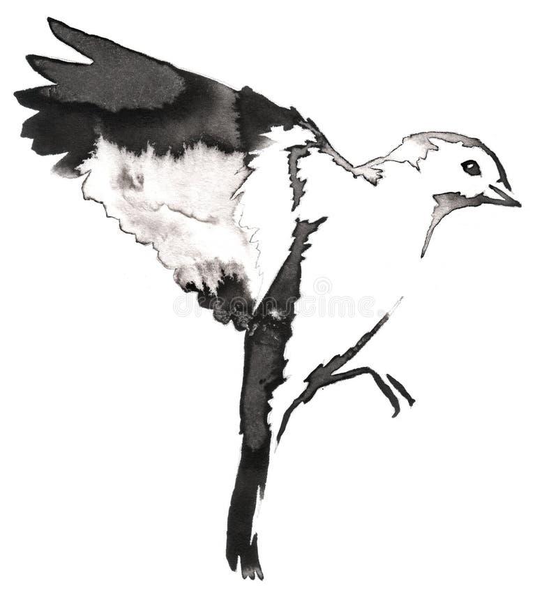 La pittura monocromatica in bianco e nero con acqua e l'inchiostro disegnano l'illustrazione dell'uccello del capezzolo immagini stock