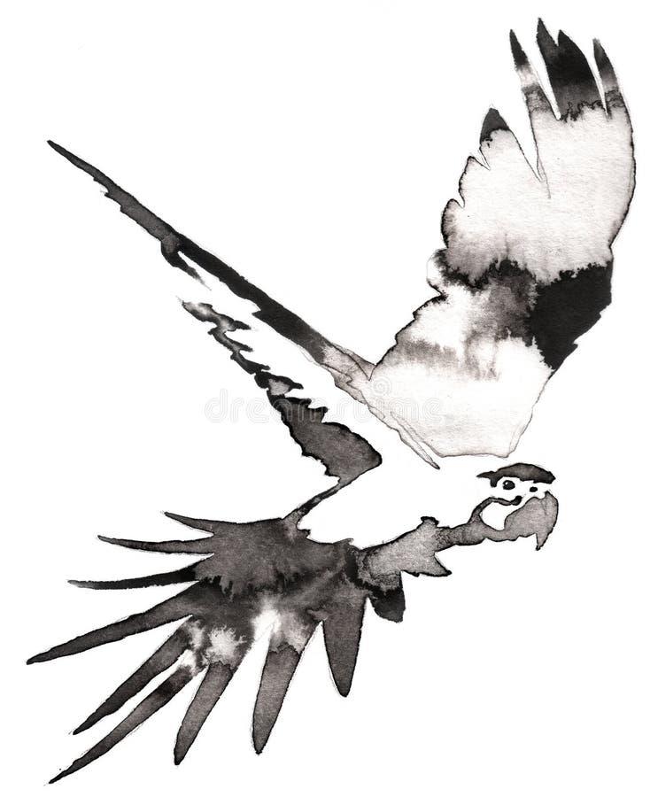 La pittura monocromatica in bianco e nero con acqua e l'inchiostro disegnano l'illustrazione dell'uccello del pappagallo illustrazione vettoriale