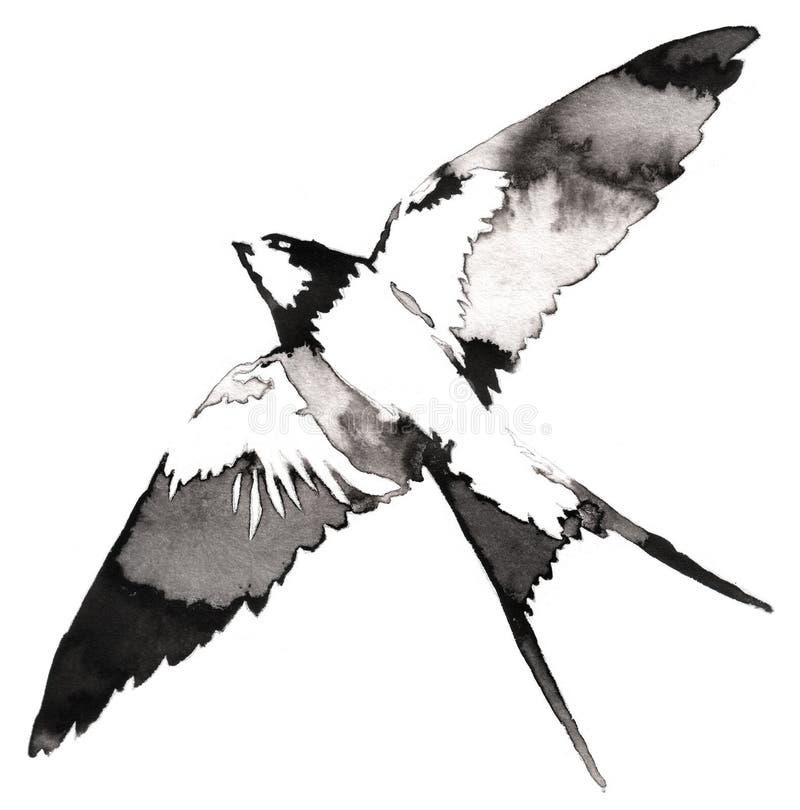 La pittura monocromatica in bianco e nero con il tiraggio dell'inchiostro e dell'acqua inghiotte l'illustrazione dell'uccello fotografia stock