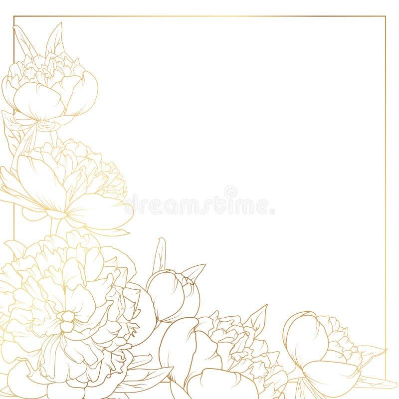 La pivoine de Rose fleurit l'or lumineux de coin de cadre de frontière illustration libre de droits