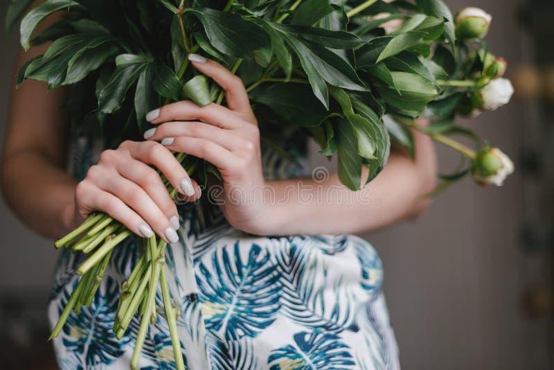 La pivoine mignonne et belle fleurit chez des mains du ` s des femmes Beaucoup de pétales posés Fond gris-clair de fleurs blanche images stock