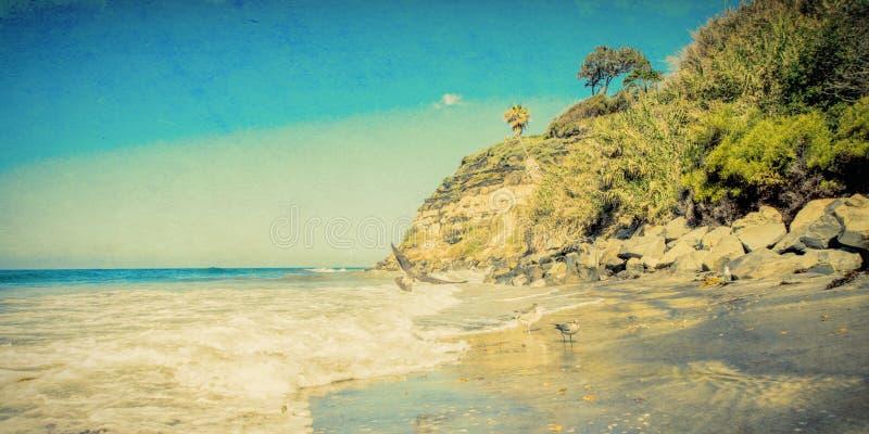 La plage célèbre du ` s de Swami dans Encinitas la Californie a donné à l'image une consistance rugueuse photographie stock