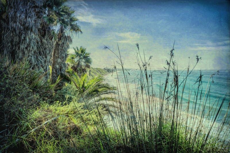 La plage célèbre du ` s de Swami dans Encinitas la Californie a donné à l'image une consistance rugueuse photos libres de droits
