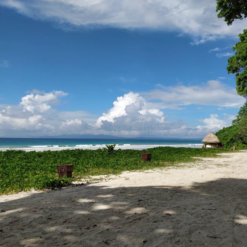 La plage de sable opacifie la mer d'arbres image stock