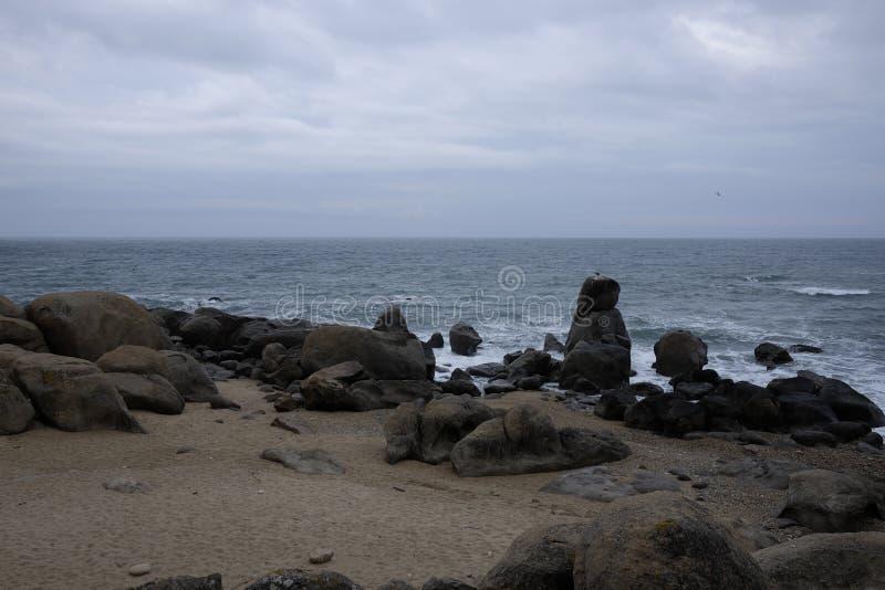 La plage jaune de pierres images libres de droits