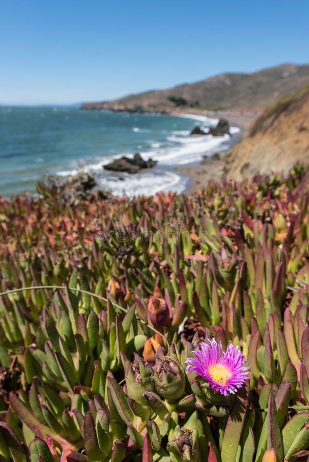 La plage la Californie de rodéo bascule les vagues et le sable photo stock