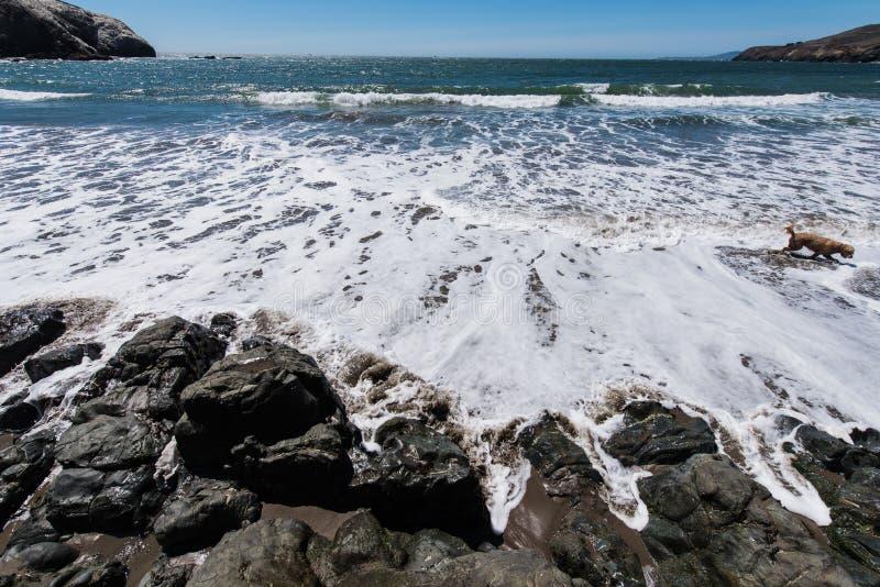 La plage la Californie de rodéo bascule les vagues et le sable photos libres de droits