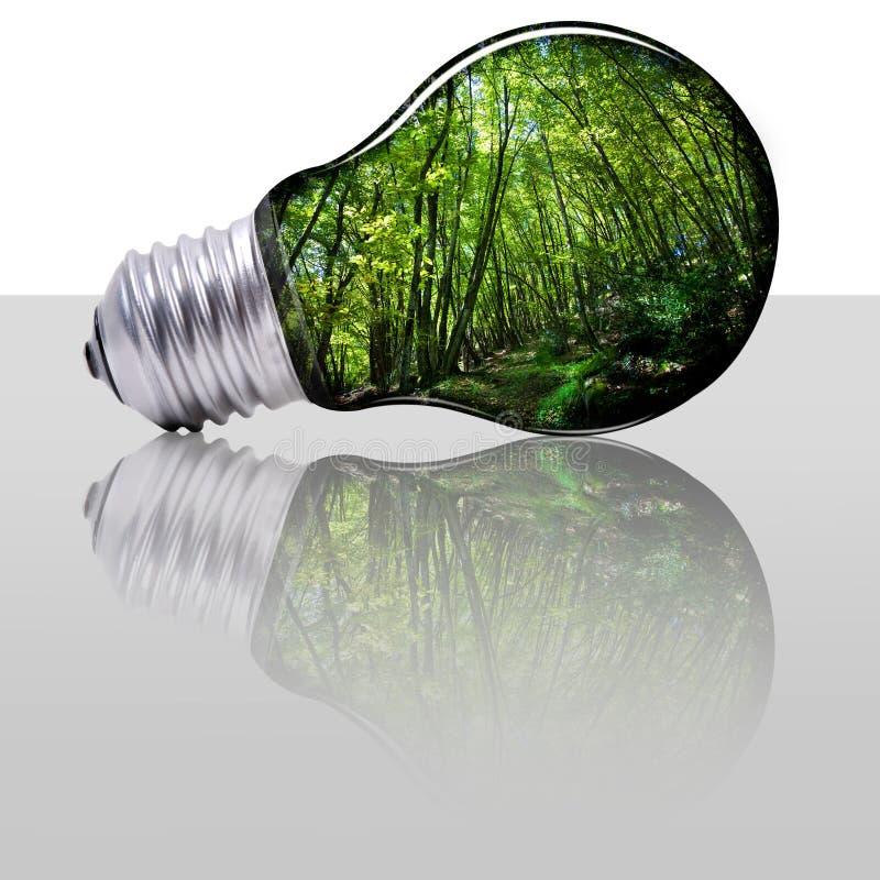 la planète d'énergie protègent renouvelable image stock