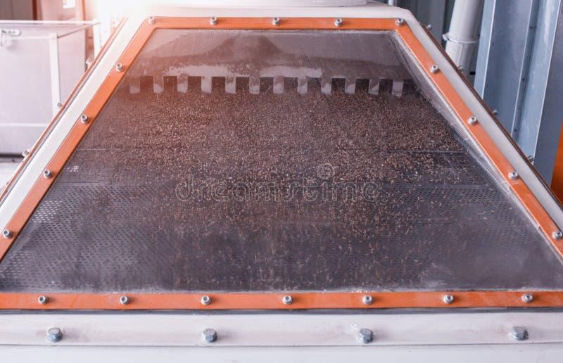 La planta para el proceso y la fabricación de granos alimenticios, grano pasa a través del sistema de la limpieza, grano de la li fotografía de archivo libre de regalías