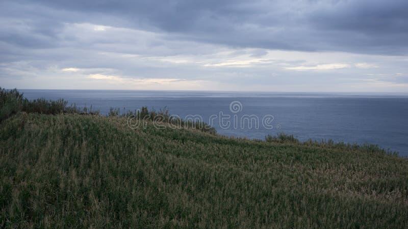 La plantation et la mer de maïs aménagent en parc dans le sao Miguel, Açore photos stock