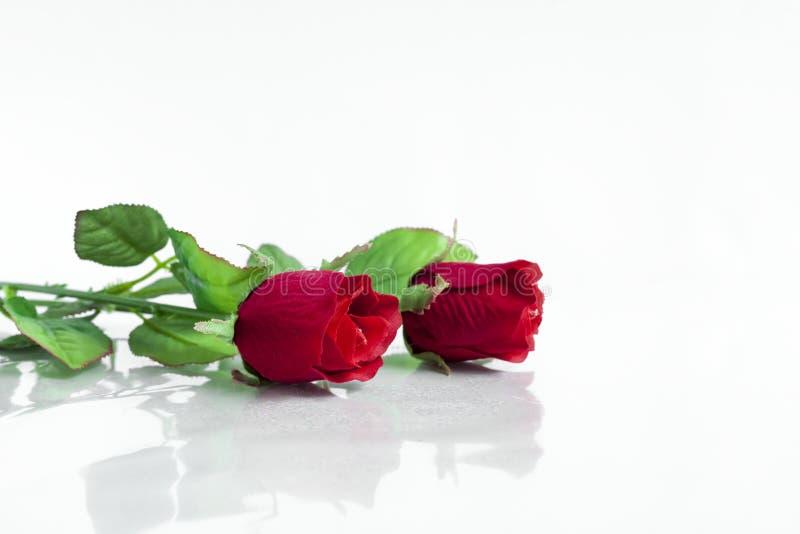 La plastica rossa è aumentato fotografia stock libera da diritti