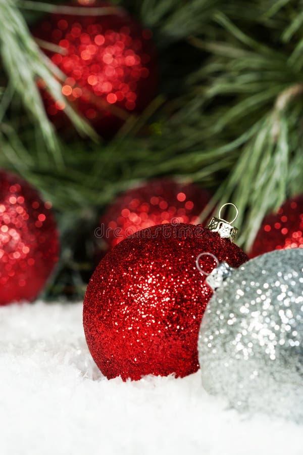 La plata roja adorna nieve del pino fotos de archivo