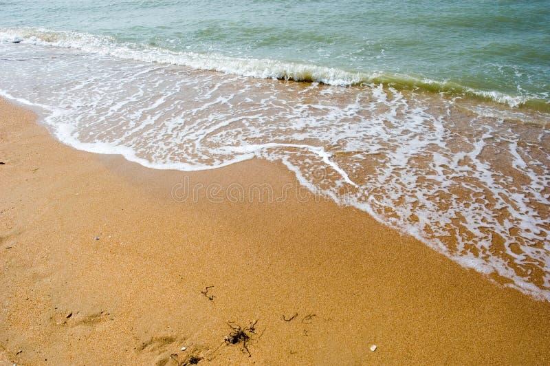 La playa fotografía de archivo libre de regalías