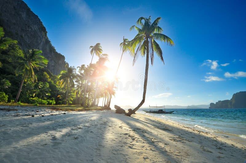La playa arenosa del paraíso en la puesta del sol en la isla en el EL Nido phi foto de archivo libre de regalías