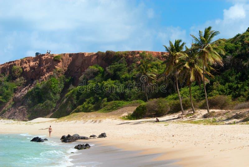 La playa hermosa con las palmeras en el Praia hace Amor fotos de archivo libres de regalías