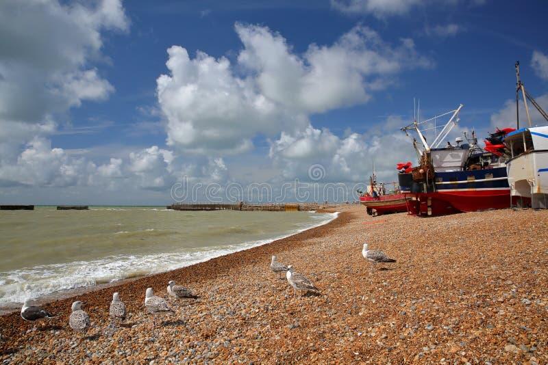 La playa lanzó los barcos de pesca con un cielo hermoso y las gaviotas en el primero plano, Hastings, Reino Unido foto de archivo