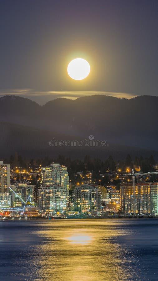 La pleine lune de novembre photo libre de droits
