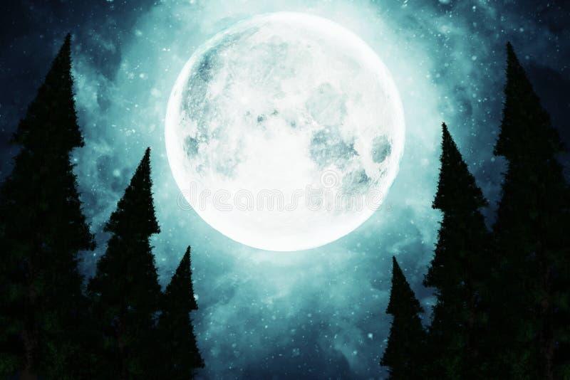 La pleine lune illumine les dessus des arbres photos libres de droits