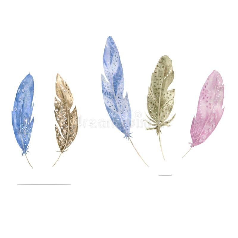 La plume Grey Pink Blue d'aquarelle fait varier le pas de l'illustration géométrique semblable de dessin d'oiseau de boho d'aqure illustration libre de droits