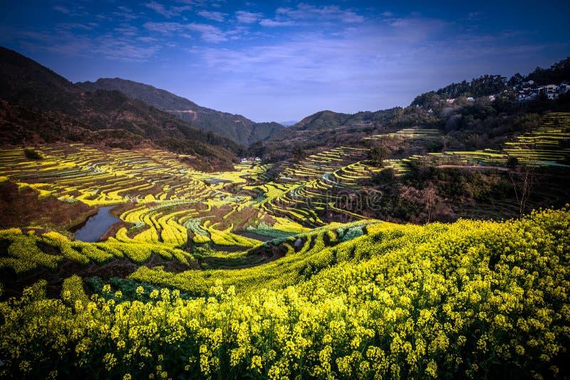 La plupart de beau pays Wuyuan photo libre de droits