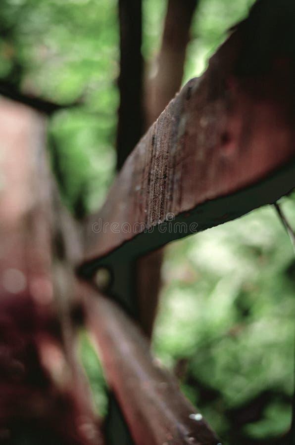 La poignée latérale en bois ramène dessus un chemin forestier photos libres de droits