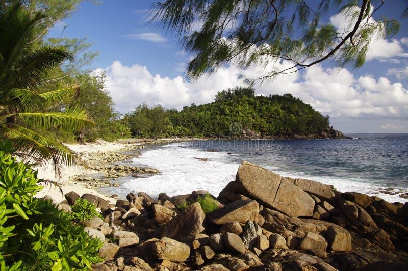 La police aboie, paradis tropical, Seychelles photo libre de droits