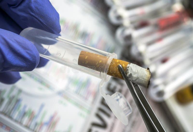 La polizia esperta esamina una sigaretta per intromettersi il laboratorio balistico fotografia stock