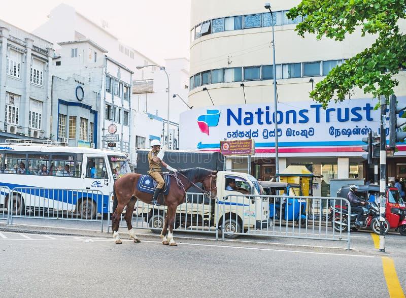 La polizia montata a Colombo fotografia stock libera da diritti