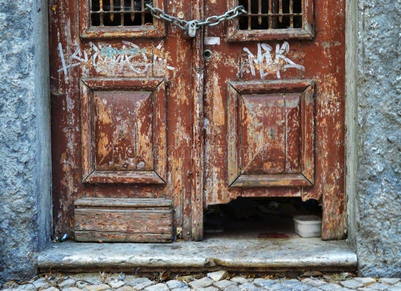 La porte du chat photo libre de droits