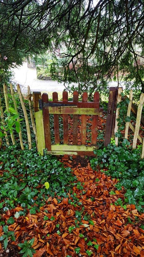 La porte moussue photo libre de droits