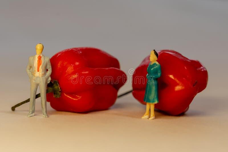 La position miniature d'homme et de femme de personnes devant le poivre d'un rouge ardent de Habanero Concept de conflit de famil photo libre de droits