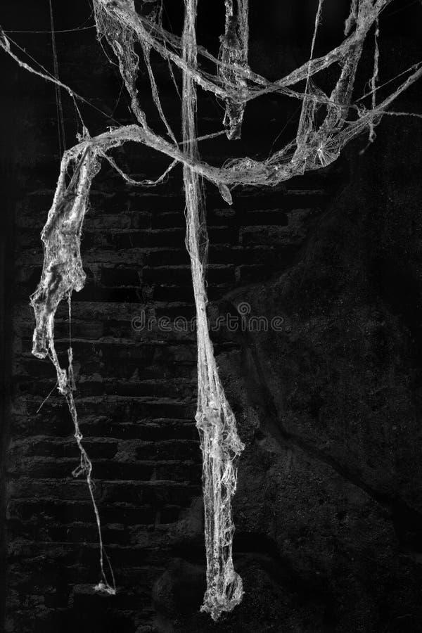 La poussière de toile de toile d'araignée ou d'araignée sur le fond de mur photo libre de droits