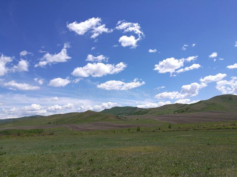 La prairie pendant le matin photographie stock