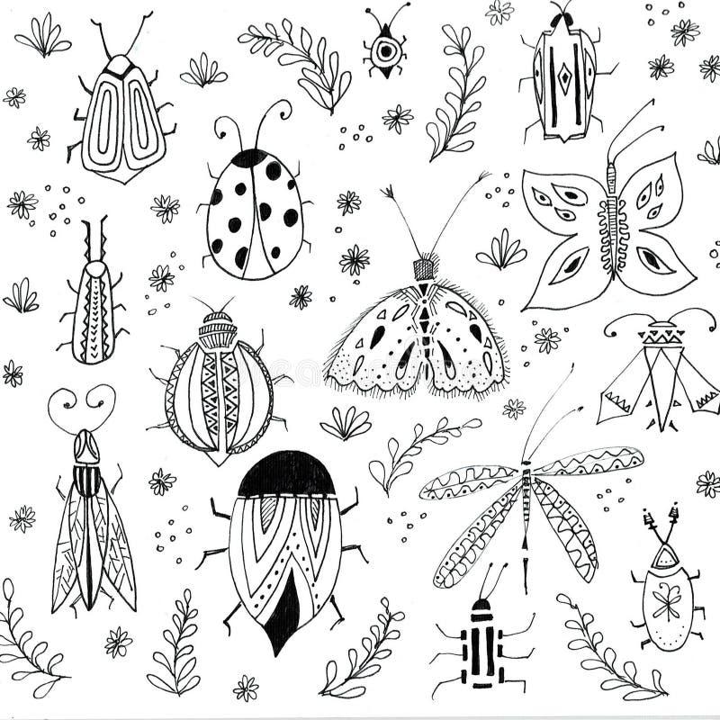 La prima molla fiorisce il fondo Elementi floreali, disegni degli insetti Illustrazioni botaniche disegnate a mano Giardino e illustrazione di stock
