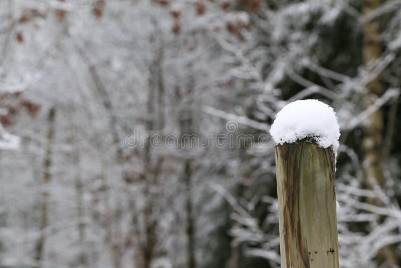 La prima neve si trova sulla colonna fotografia stock libera da diritti