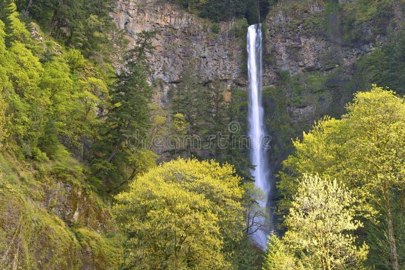 La primavera en Multnomah cae Oregon. fotos de archivo
