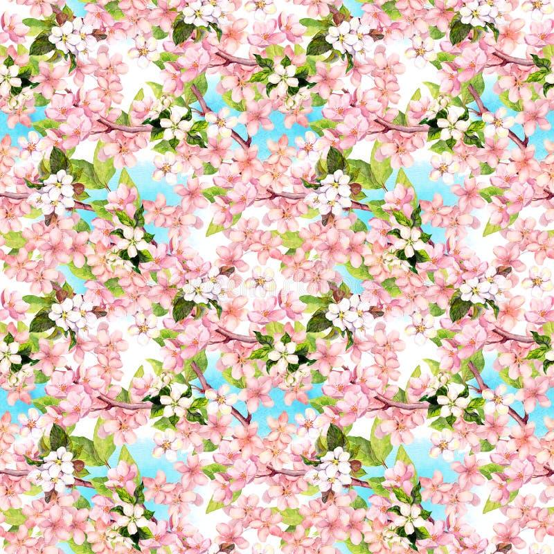 La primavera florece el flor, cielo azul Modelo inconsútil floral watercolor libre illustration