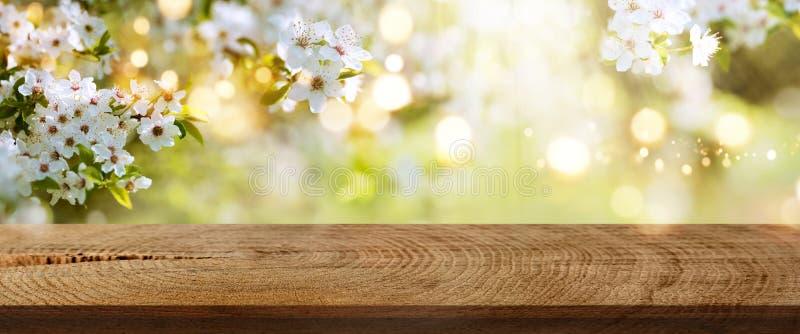 La primavera florece en un parque con la tabla de madera rústica imagenes de archivo
