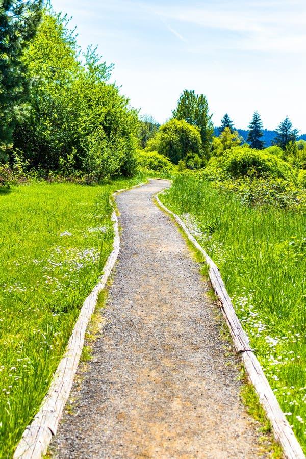 La primavera ? percorso verde venente della ghiaia fotografie stock libere da diritti