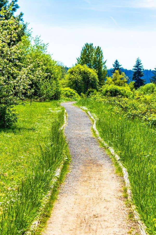 La primavera ? percorso verde venente della ghiaia fotografia stock