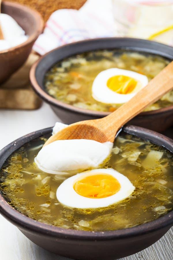 La primavera si inverdisce il borscht, minestra degli spinaci dell'acetosa immagine stock