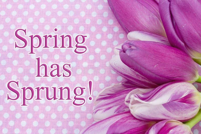 La primavera tiene saludo saltado fotos de archivo