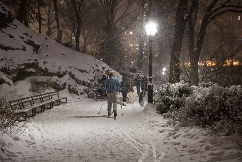 La primera nevada de 2017 en Central Park foto de archivo libre de regalías